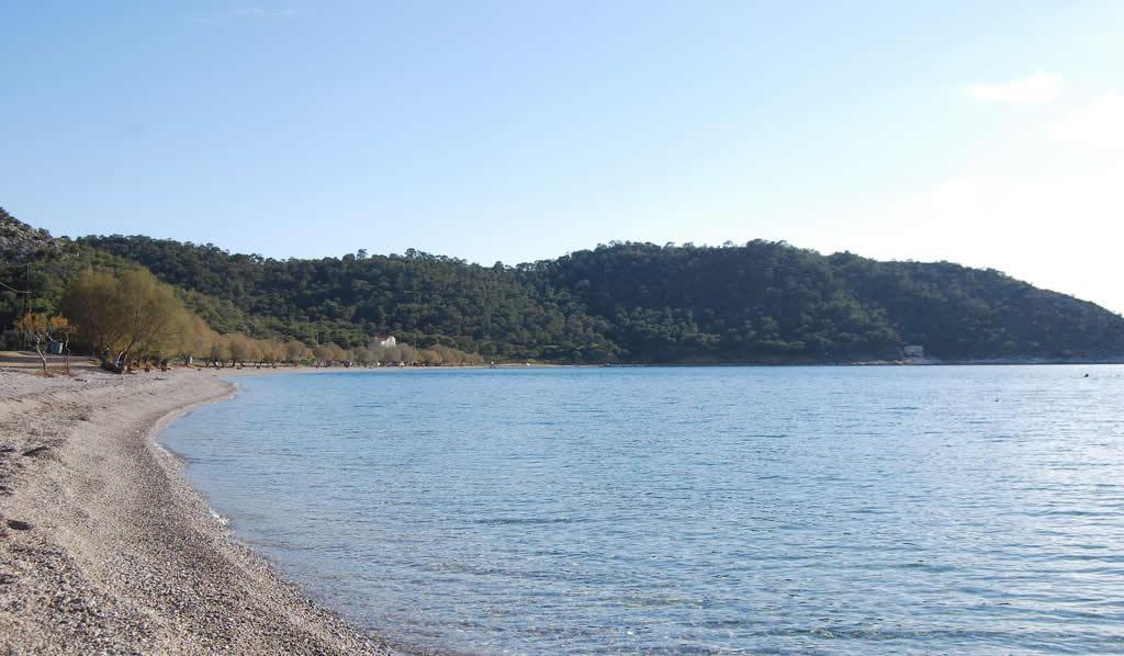Kanakia, Salamis